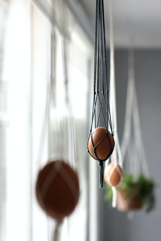 hanging organic egg beside window