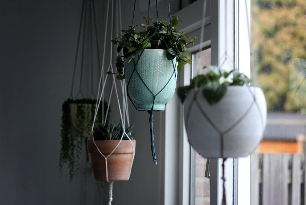 white hanging flower pot
