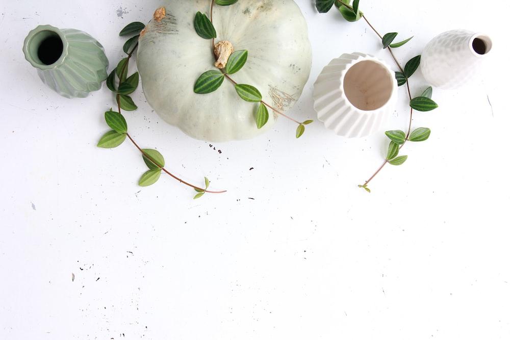 vases on white surface