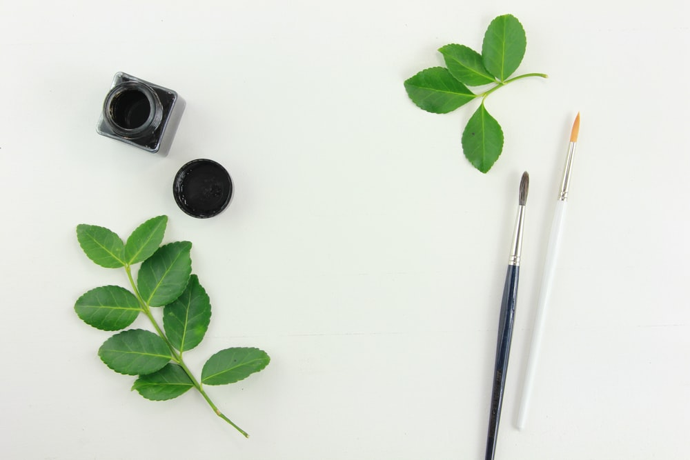 green leaves and two white and black paint brushes