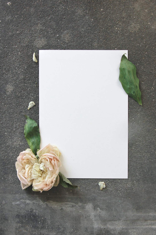 flower on empty printer paper