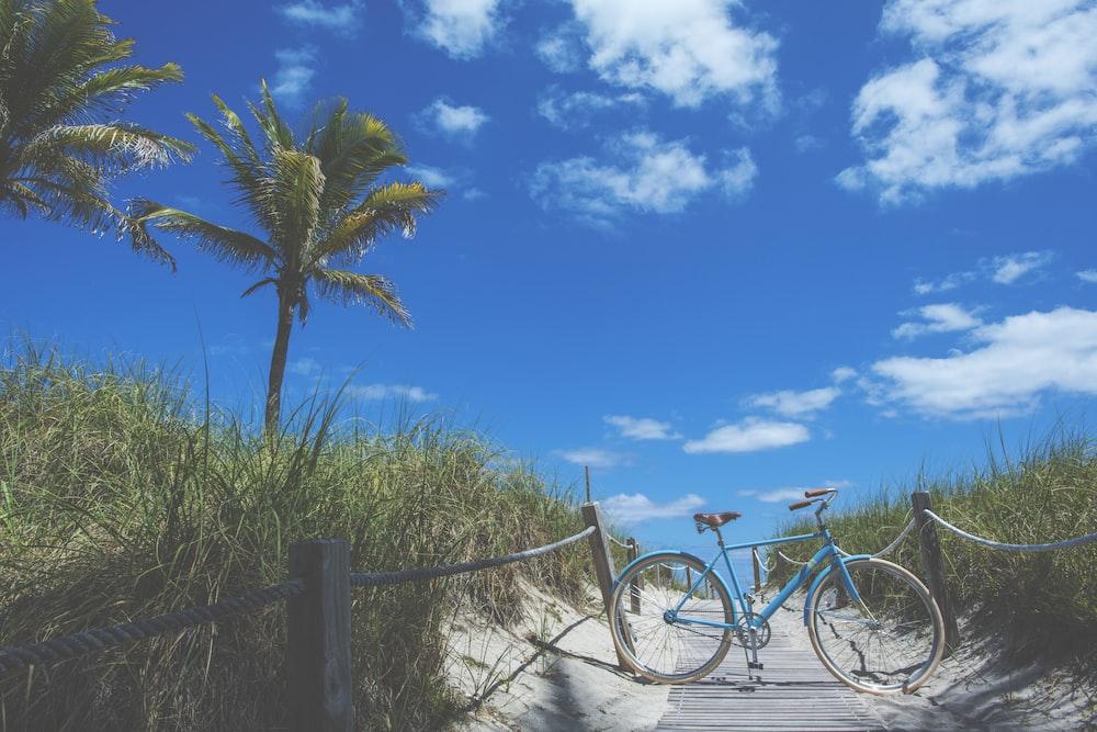 blue bike on pathway