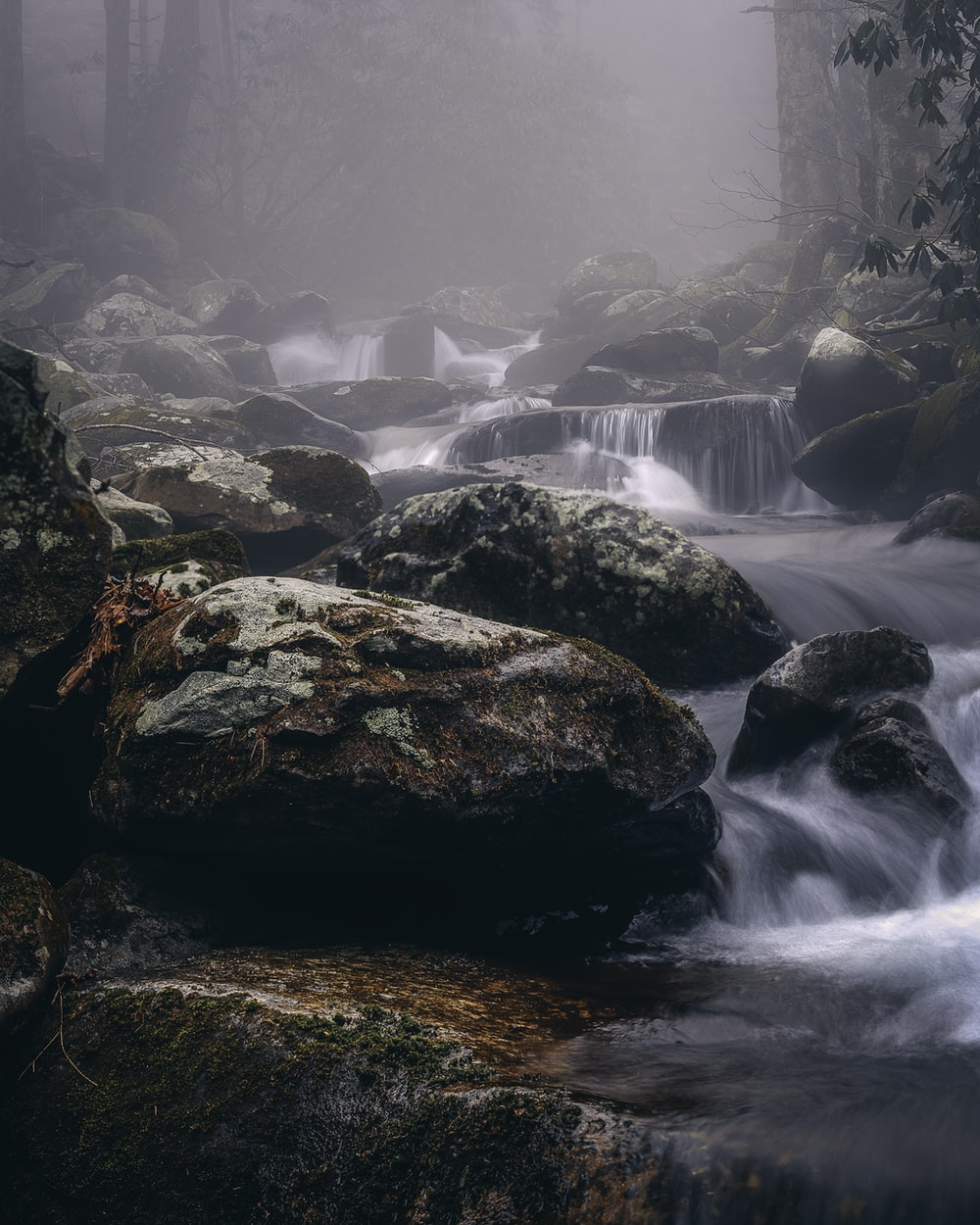 flowing stream during foggy weather