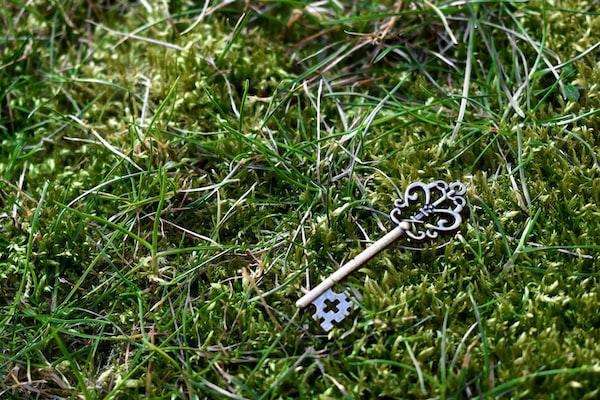 lost key from unsplash @iantuck