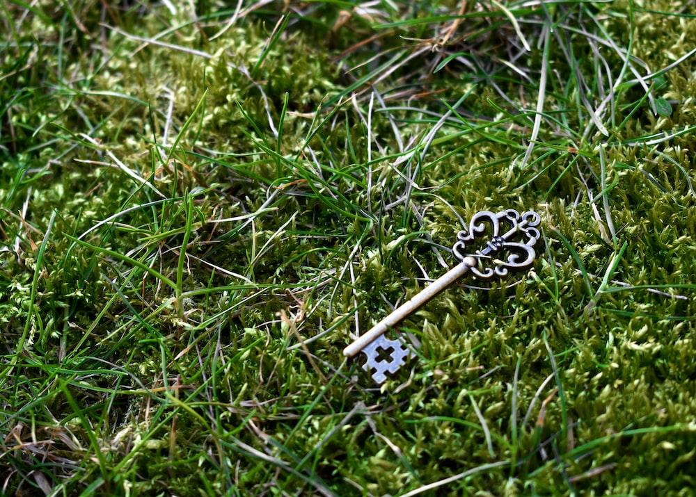 brass-color skeleton key on green grass