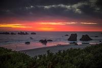 seashore across horizon during dawn