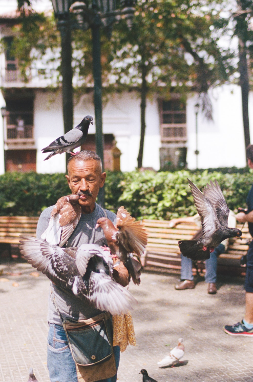 man playing with birds
