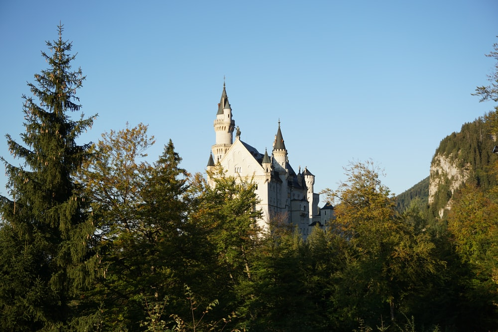 pine trees overlooking white castle under blue sky