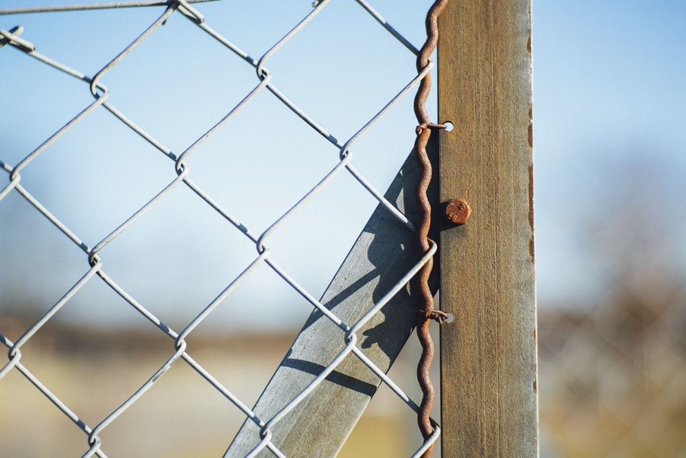 closeup photography of nail stumped on wood beside wire-link fence