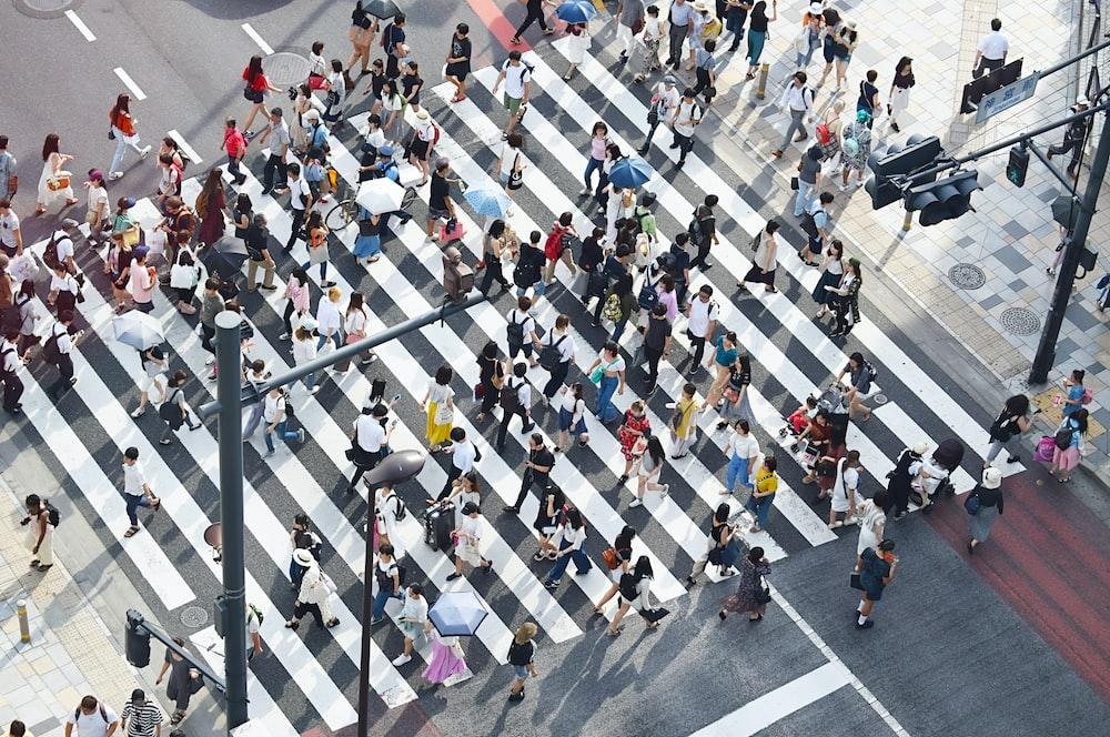 people passing on pedestrian lane at daytime