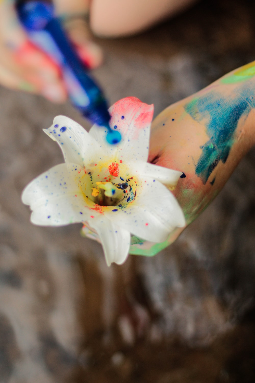 person putting paint on white flower
