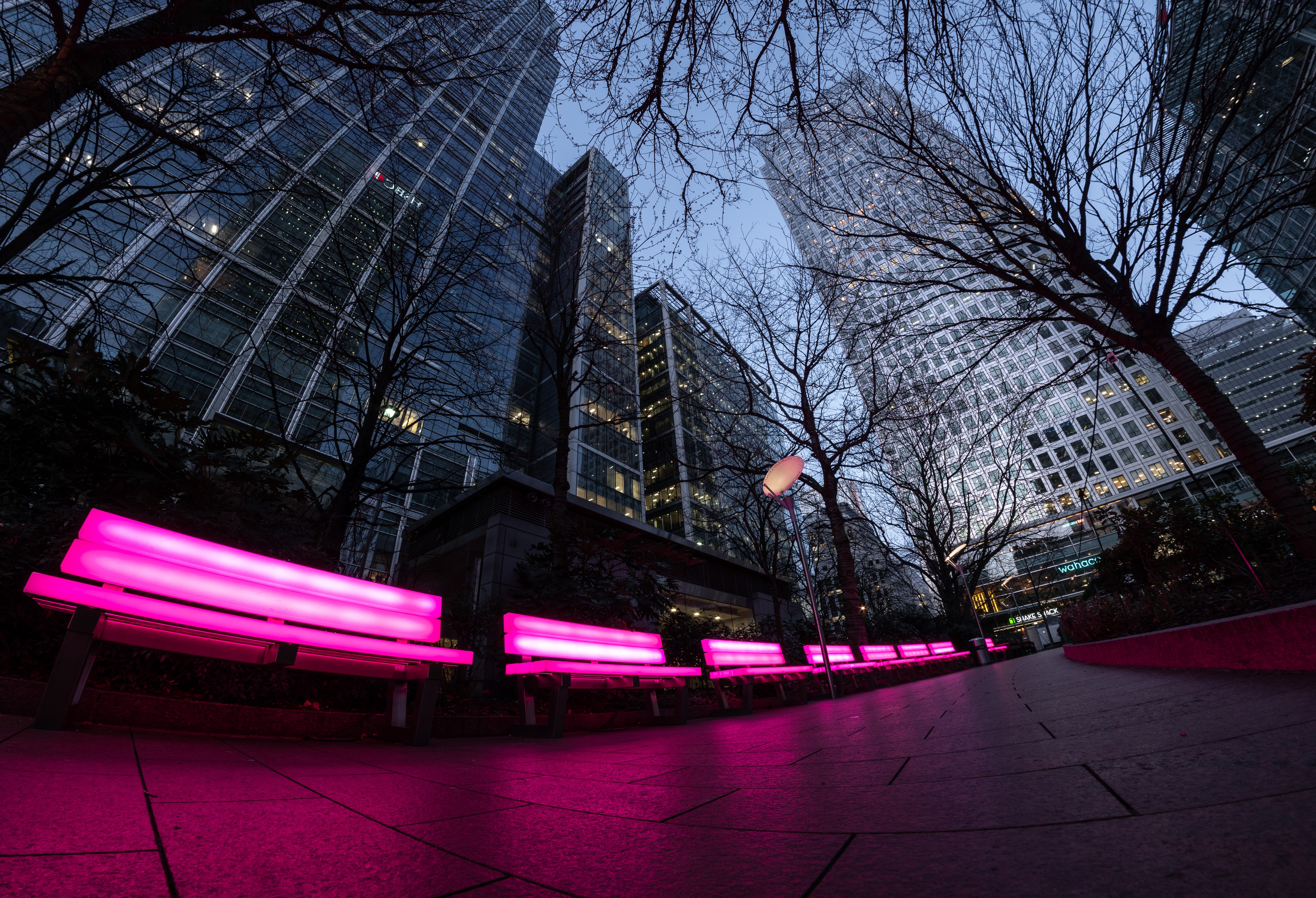 lighted pink color benches at the park near buildings