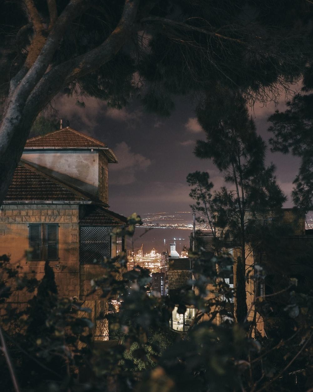 houses near trees at night
