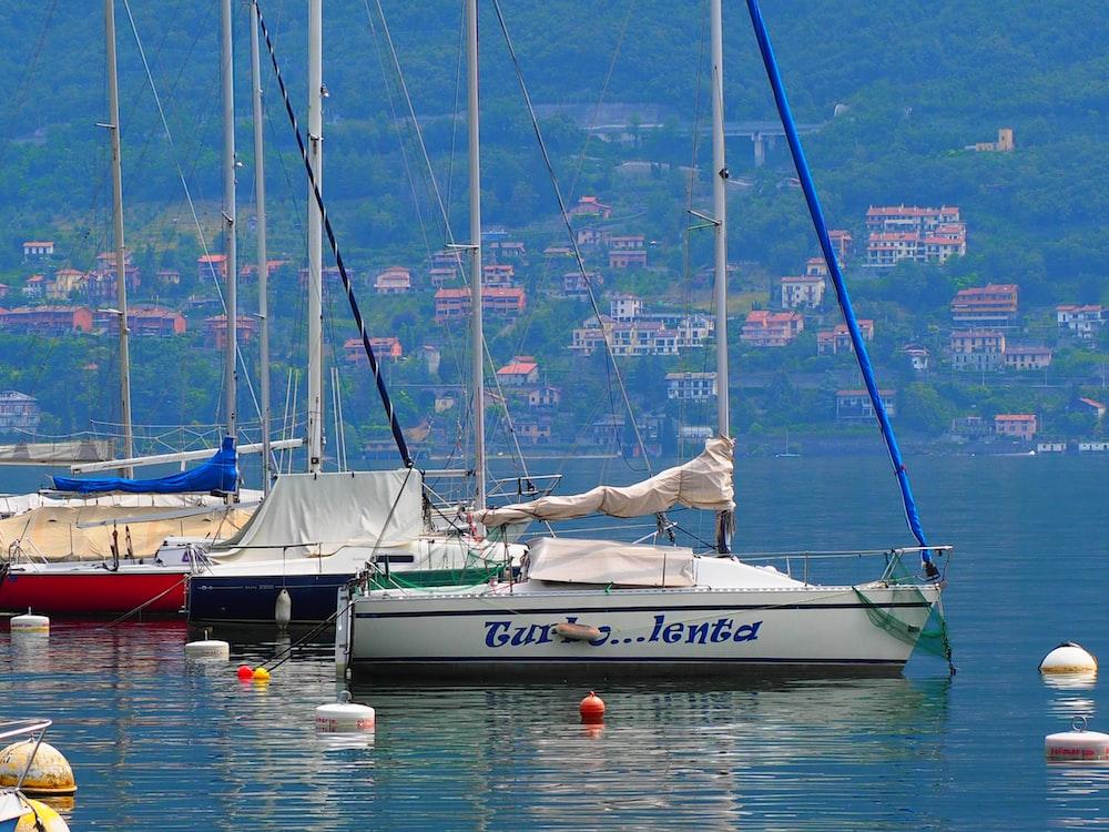 three white boats docked at daytime