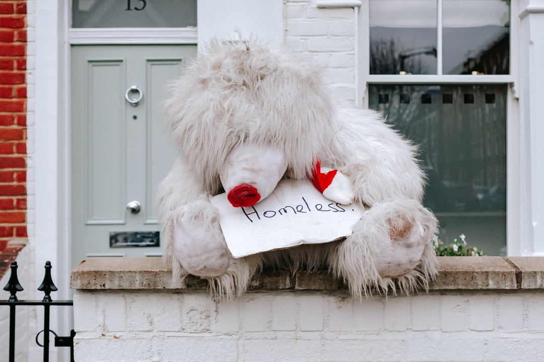 A very large rain-soaked teddy bear found sitting on a wall outside a house in London.
