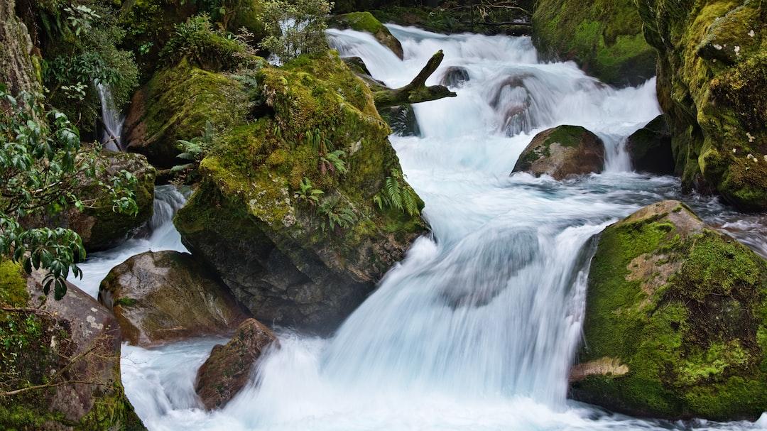 Green mossy rocks at Lake Marian Falls, Fiordland National Park, Southland, New Zealand