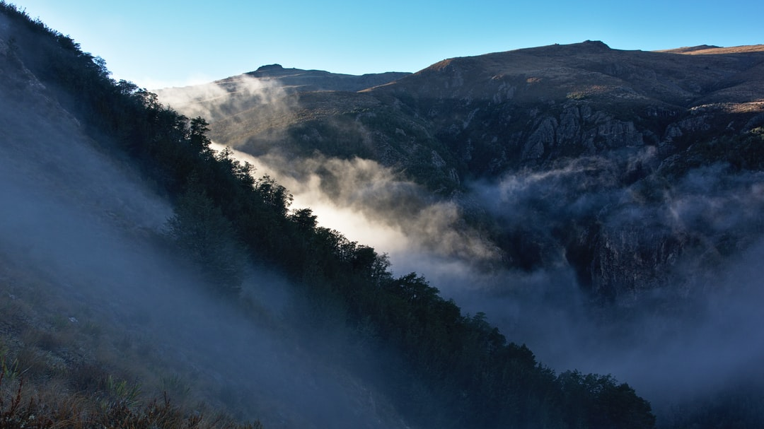 Fog over Alford Forest and West face of Mount Somers, Miners Track, Canterbury, New Zealand