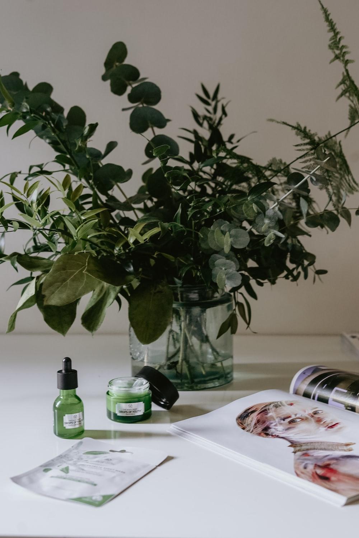 plants near open magazine on desk