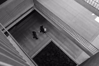 aerial view photography of two person walking