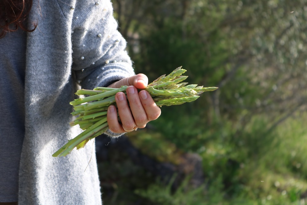 person holding asparagus