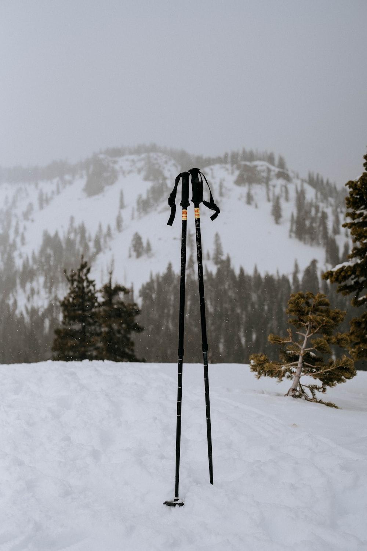 two black ski poles