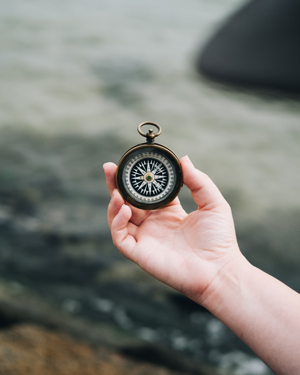 person holding white and black compass
