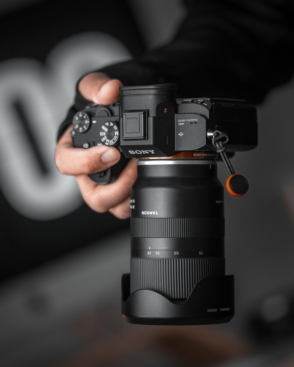 person holding Sony DLSR camera