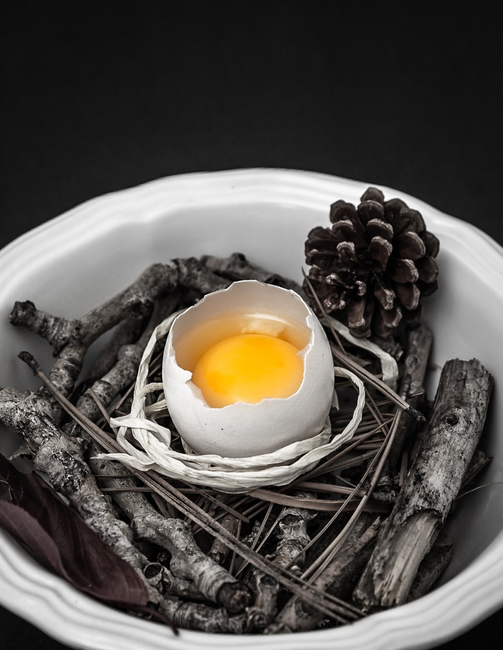 half-opened egg on bowl with tree twigs