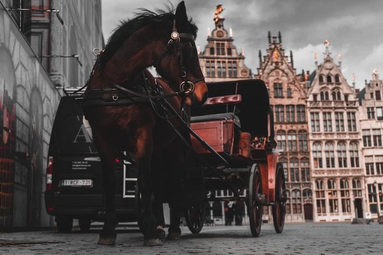 Antwerpen // Grote Markt // to do // city guide // tips // bezienswaardigheden