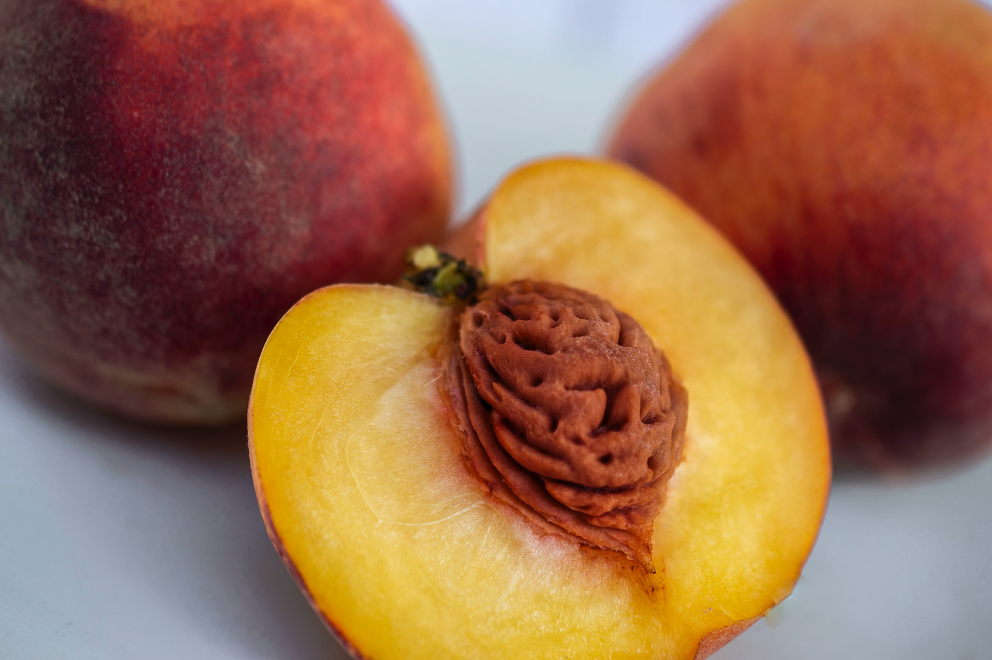 Are peaches and almonds related?