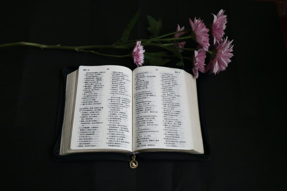 white book beside purple flowers