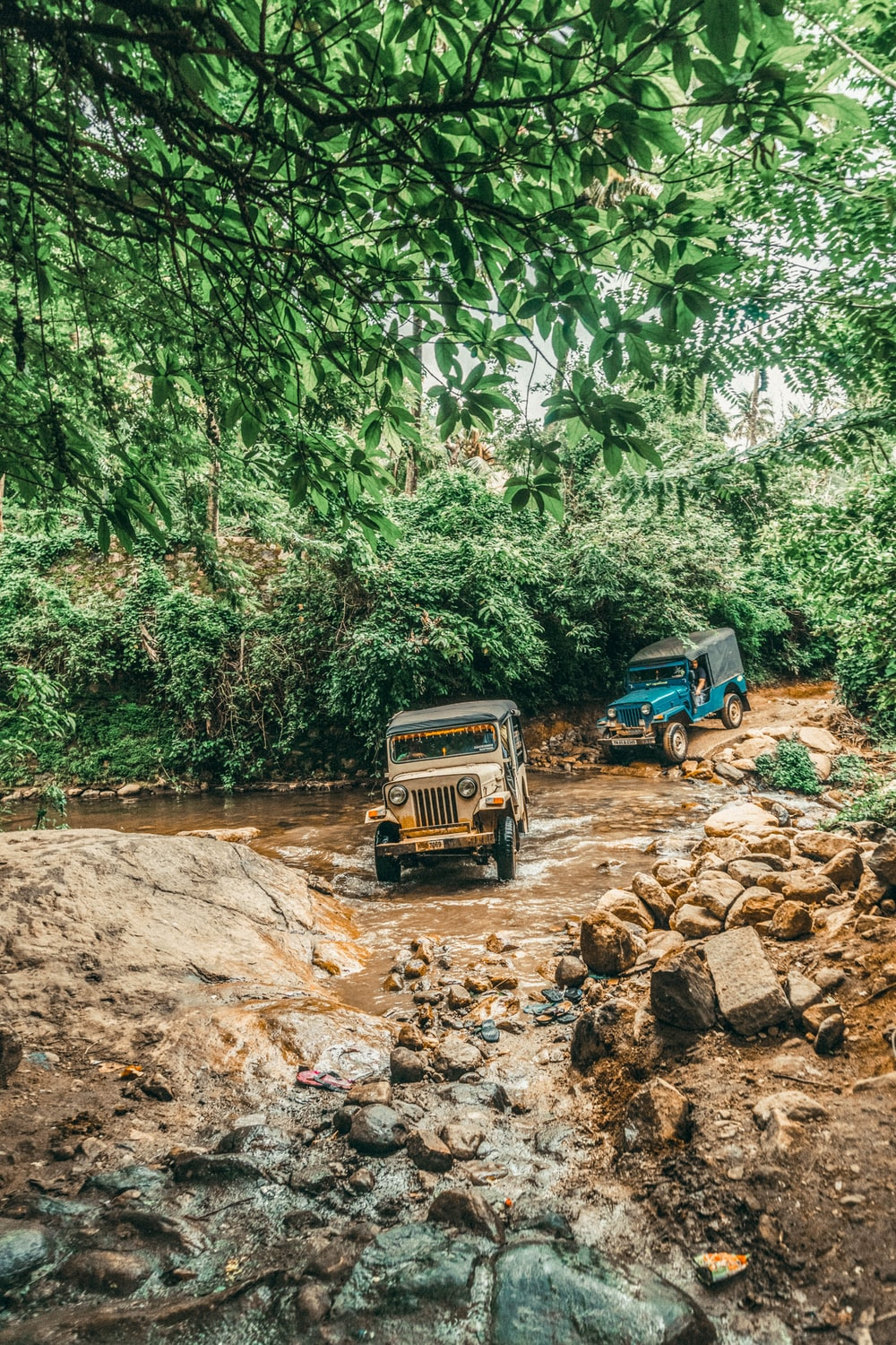 brown and blue Jeep Wranglers on rough road crossing river in forest