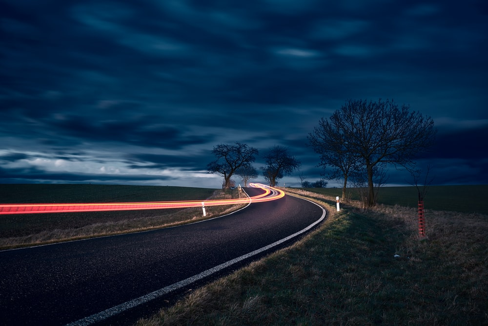 timelapse photography of road and bare trees