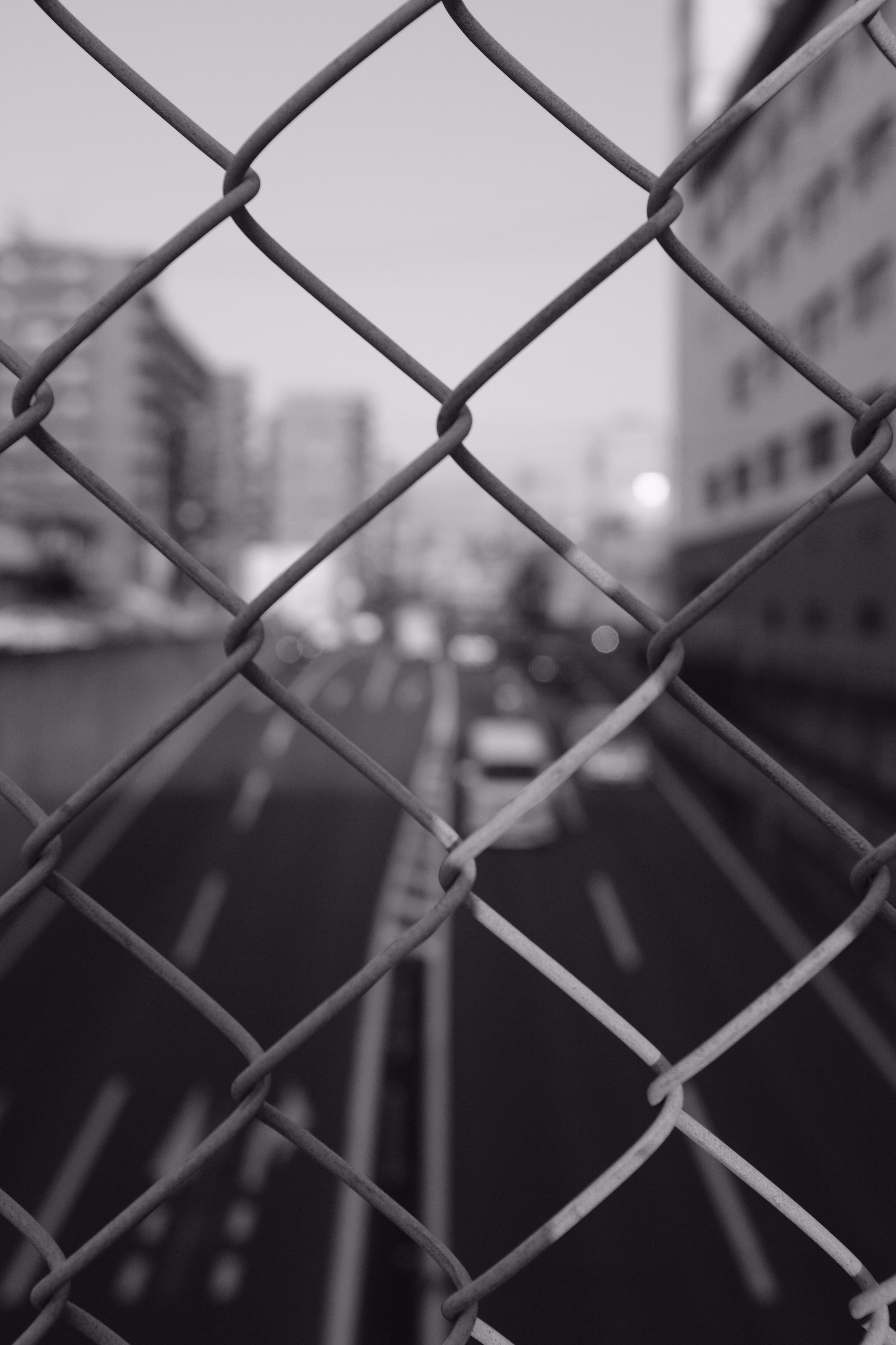 grayscale photography of chain link fence