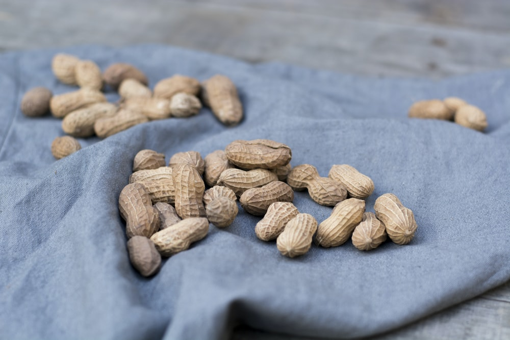 shallow focus photo of peanuts on blue textile