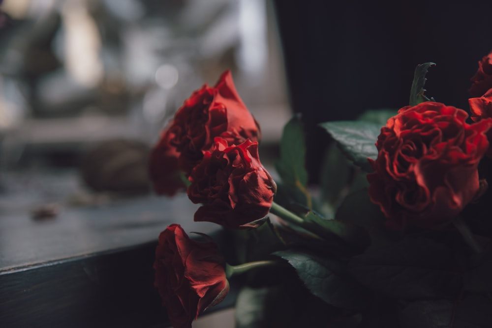 To be a florist is not for everybody     | HD photo by Artem