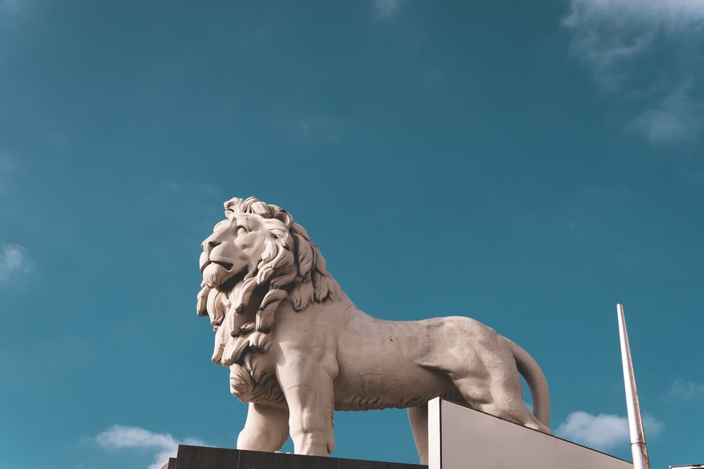 gray concrete lion statue during daytime