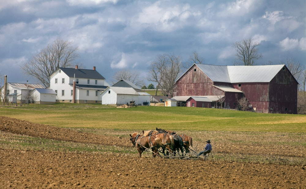 man farming with four horses near barn during daytime