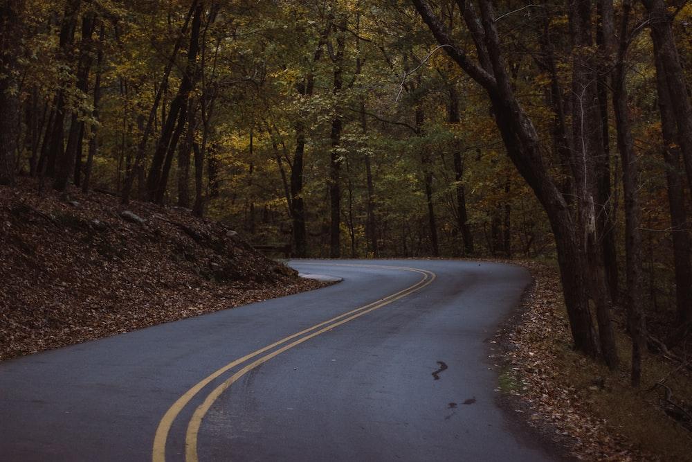 black road path