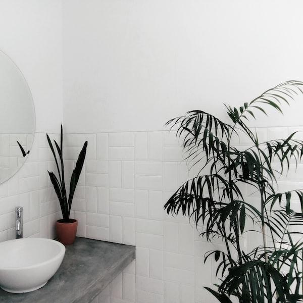 Rôzne typy umývadiel: ako si vybrať