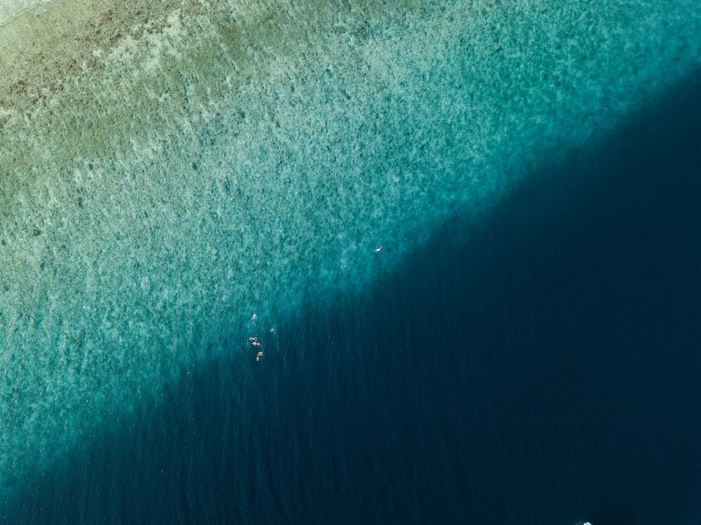 bird's-eye photography of body of water
