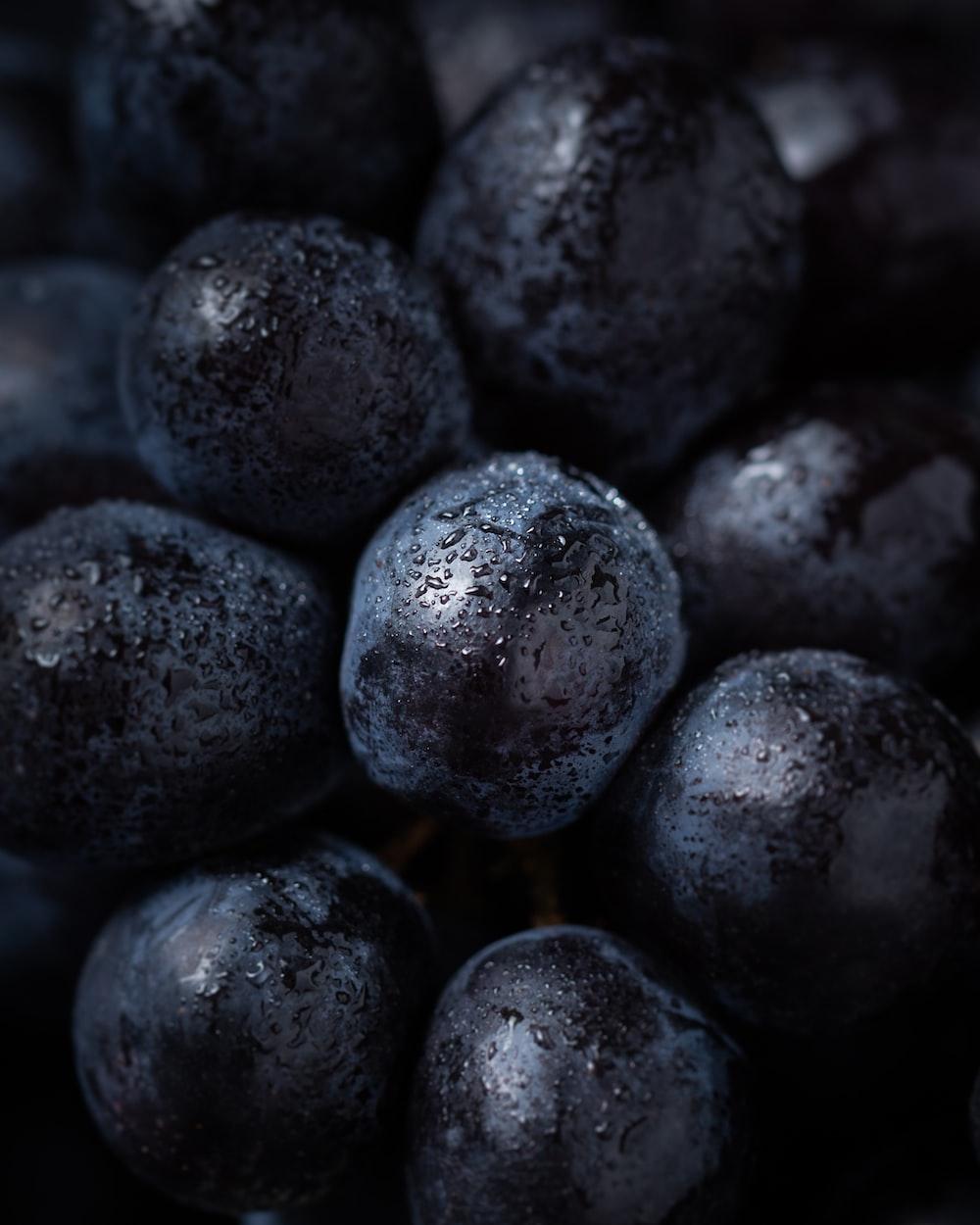 wet blueberries