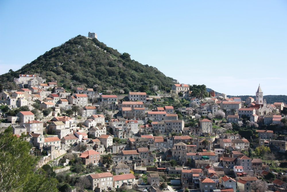aerial photography of houses on hill at daytime