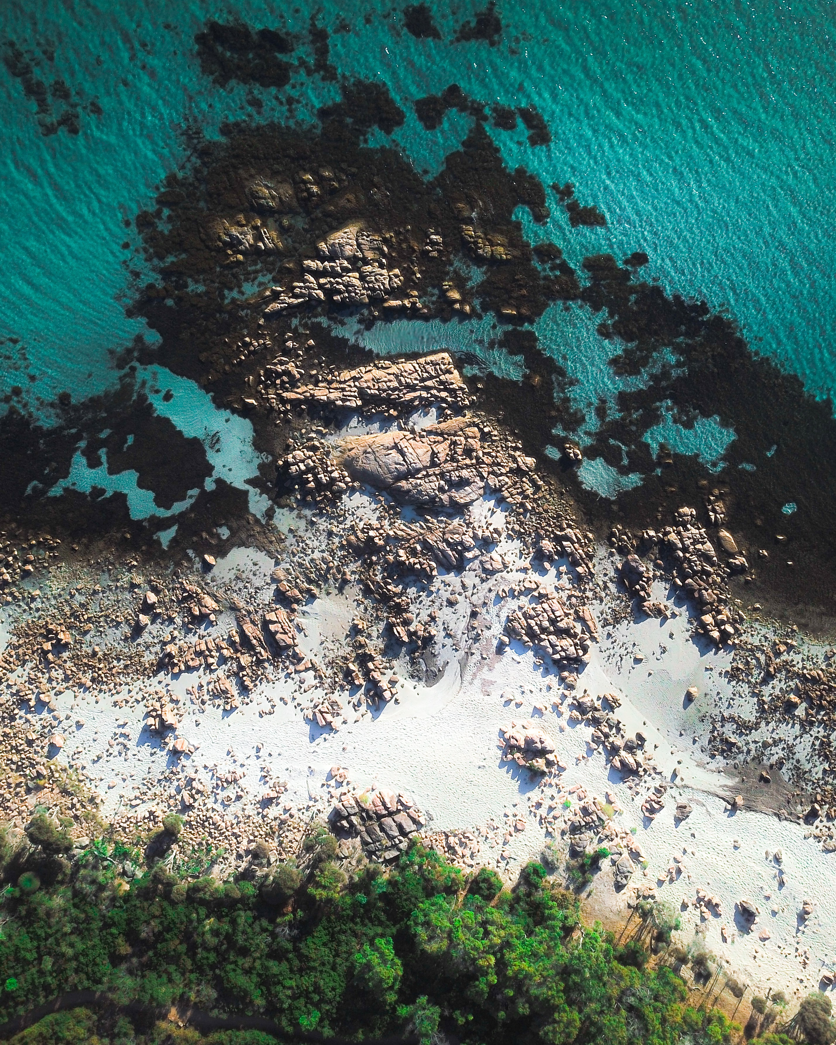 bird's eye view photography of seashore