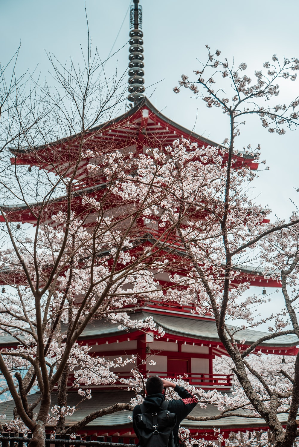 red and white Japanese temple