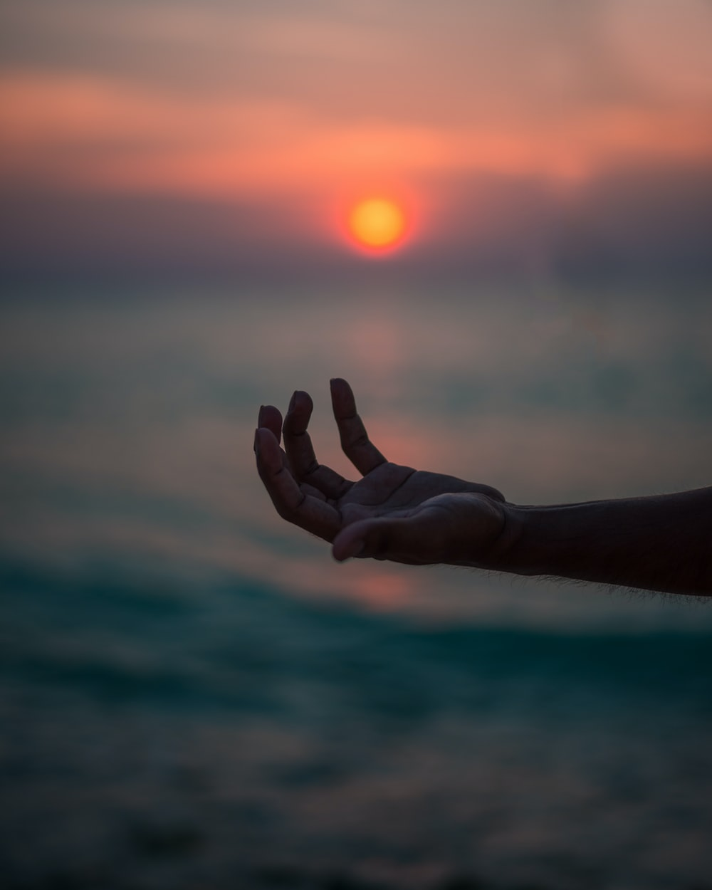 human hand near body of water