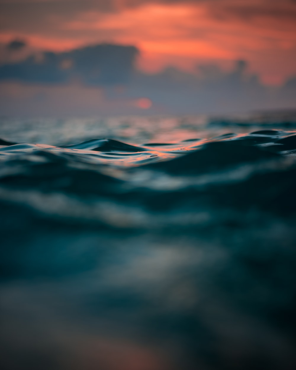 selective focus photography of water