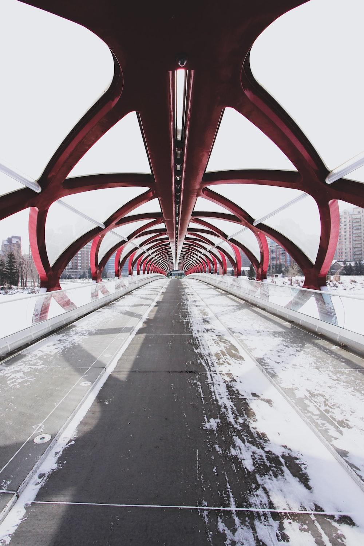 empty tunnel bridge at daytime