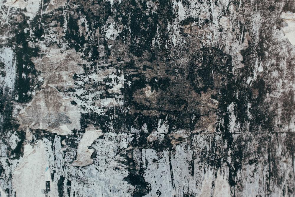 gray and white concrete wall