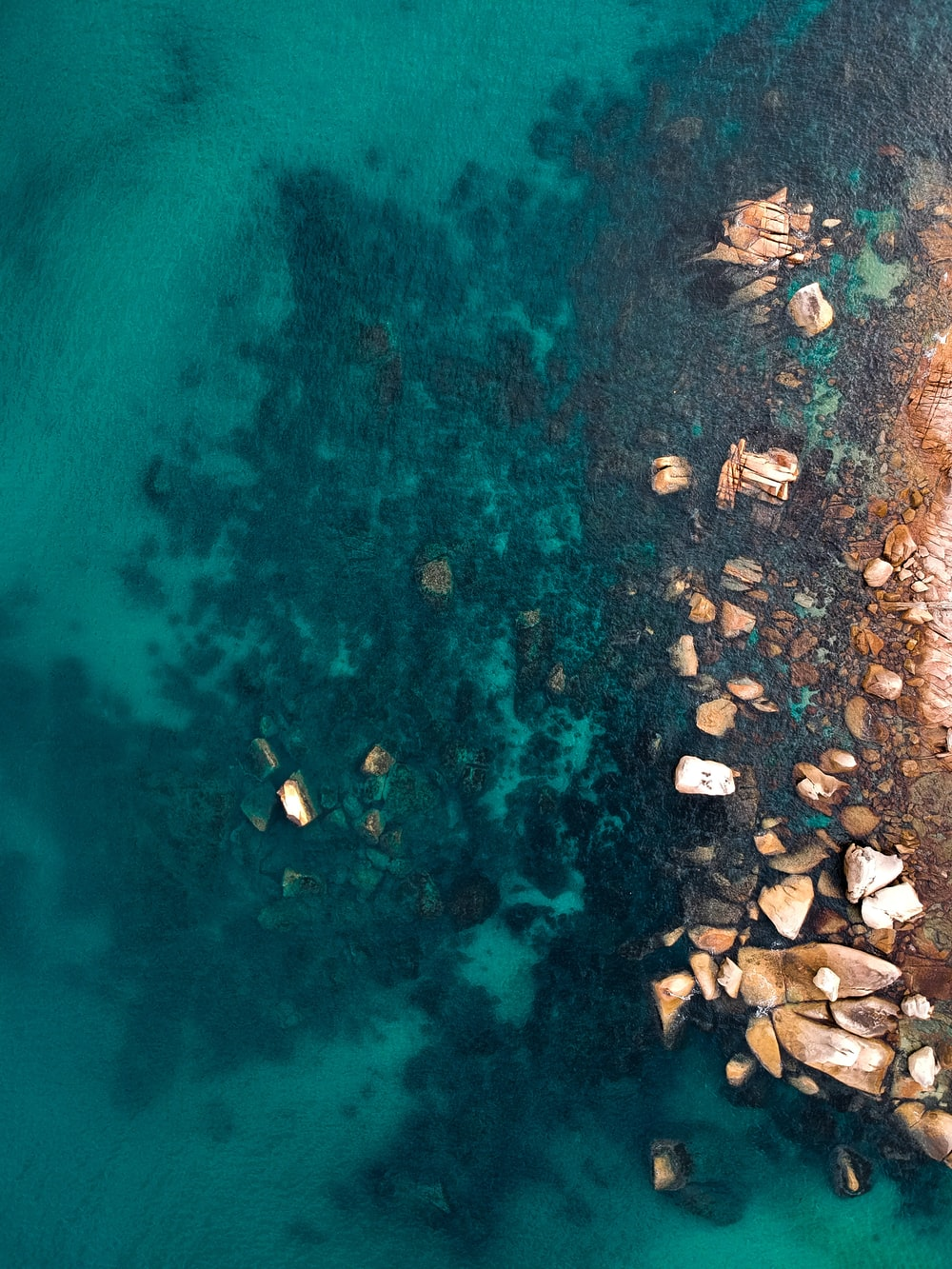 aerial view photography of rocky shore